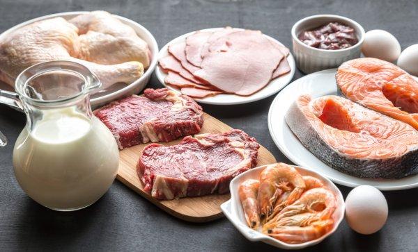 MASAの『為になる栄養学』【タンパク質】 - ANTI WORLD staff blog